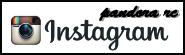 PANDORA RC instagram